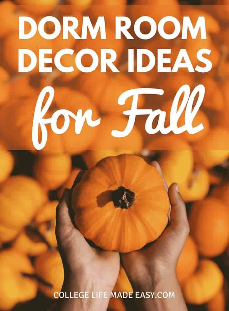 College decorations that will get your dorm room all ready for fall! DIY ideas and more for freshmen year and beyond.