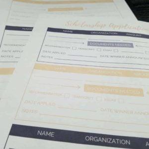 Scholarship Application Tracker Worksheets - Alternating Colors