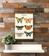 papilon butterfly canvas wall hanging decor