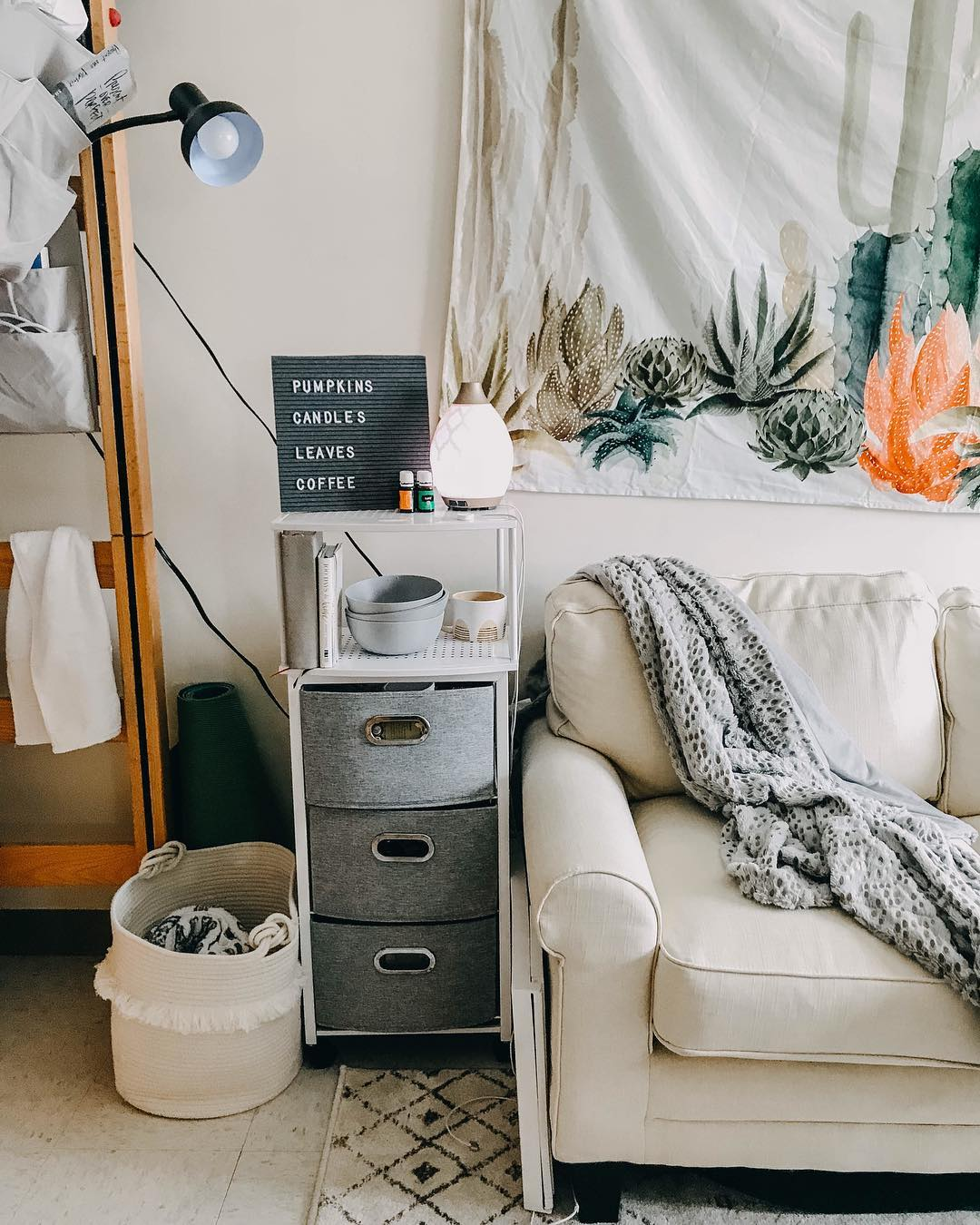 Belmont university dorm room with letterboard & cactus tapestry