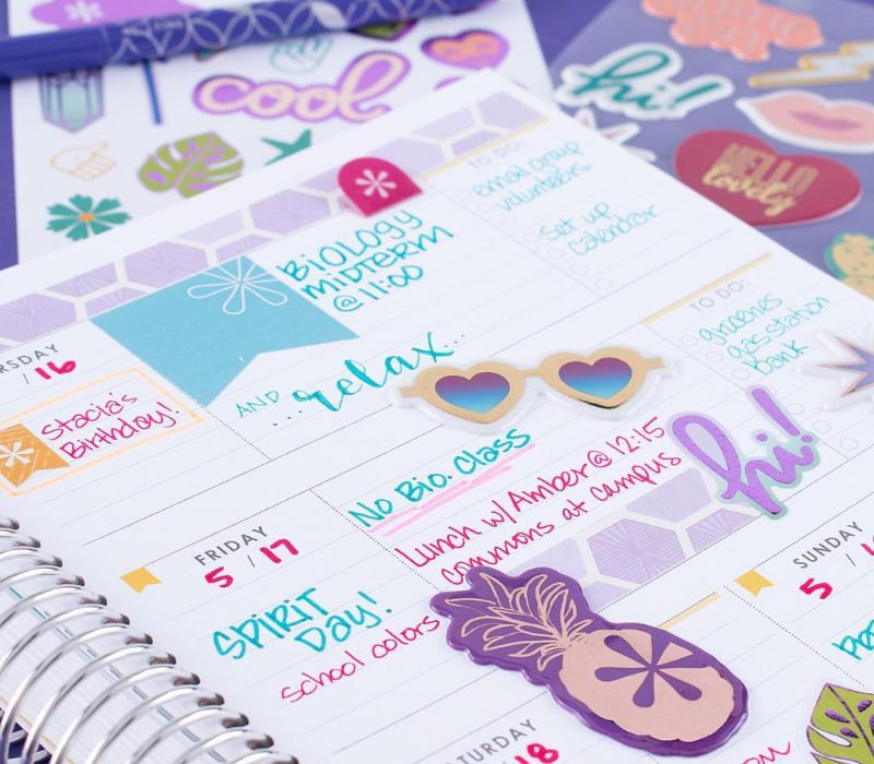 inside the erin condren student planner