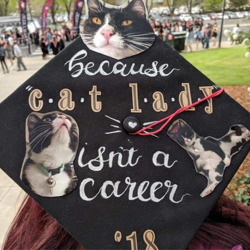 funny grad caps - cat lady
