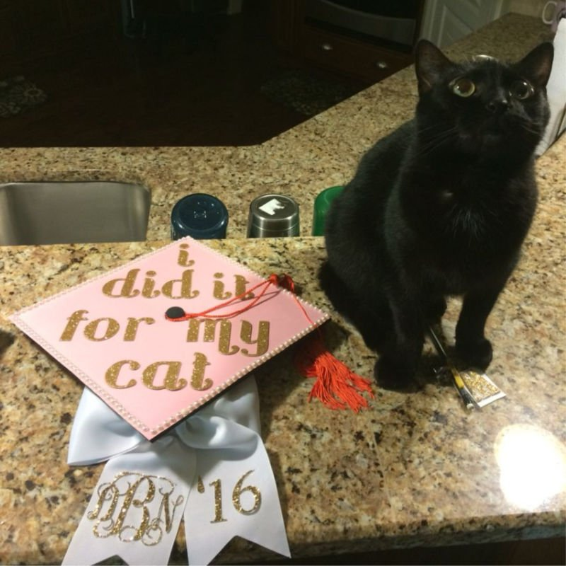 funny ideas for graduation - did it for my cat