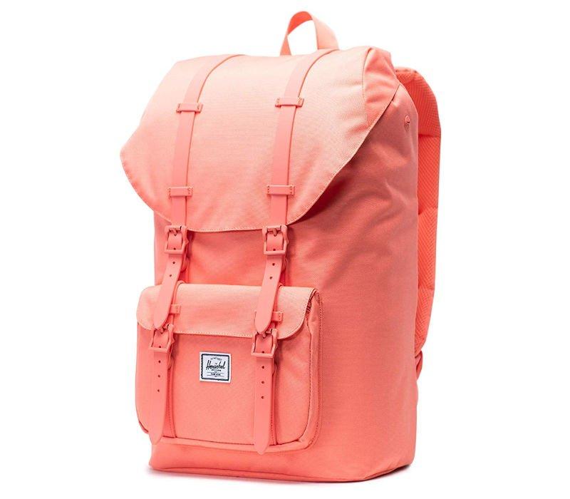 cutest backpacks for college - pink Herschel Retreat