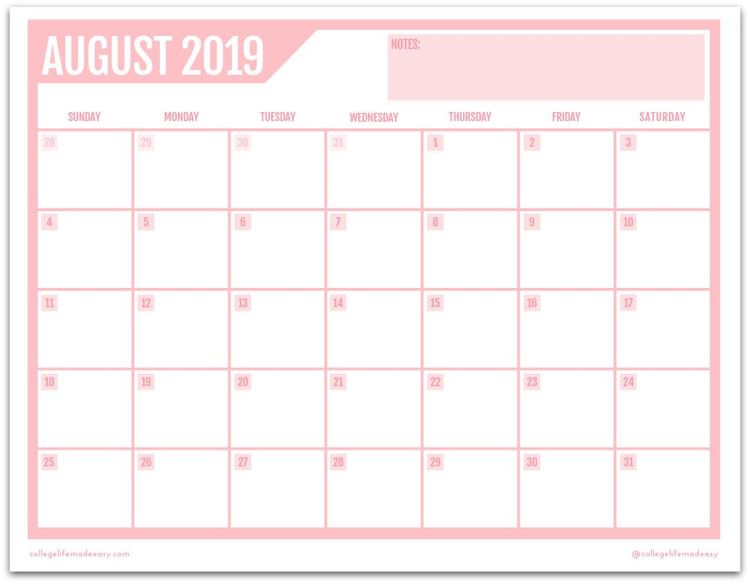 image relating to Cute Printable Calendars known as Cost-free Printable 2019 Regular Calendar (3 Adorable Strategies!)