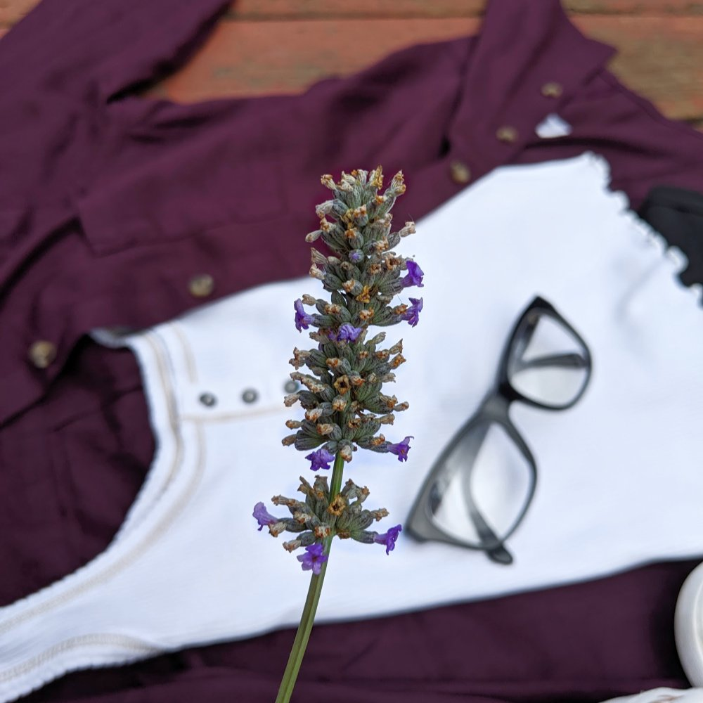sprig of lavender in front of SO clothing