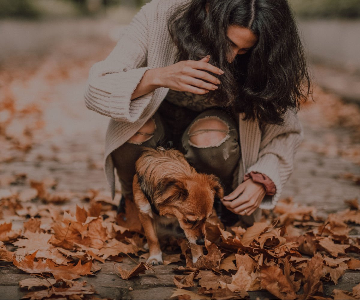 college age woman gathering fall leaves with her small dog