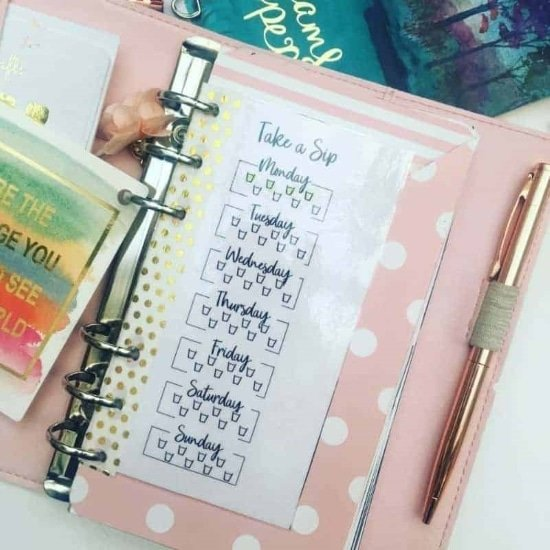 bullet journal template example