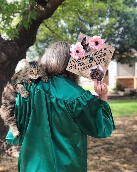 better life for my cat nursing cap idea