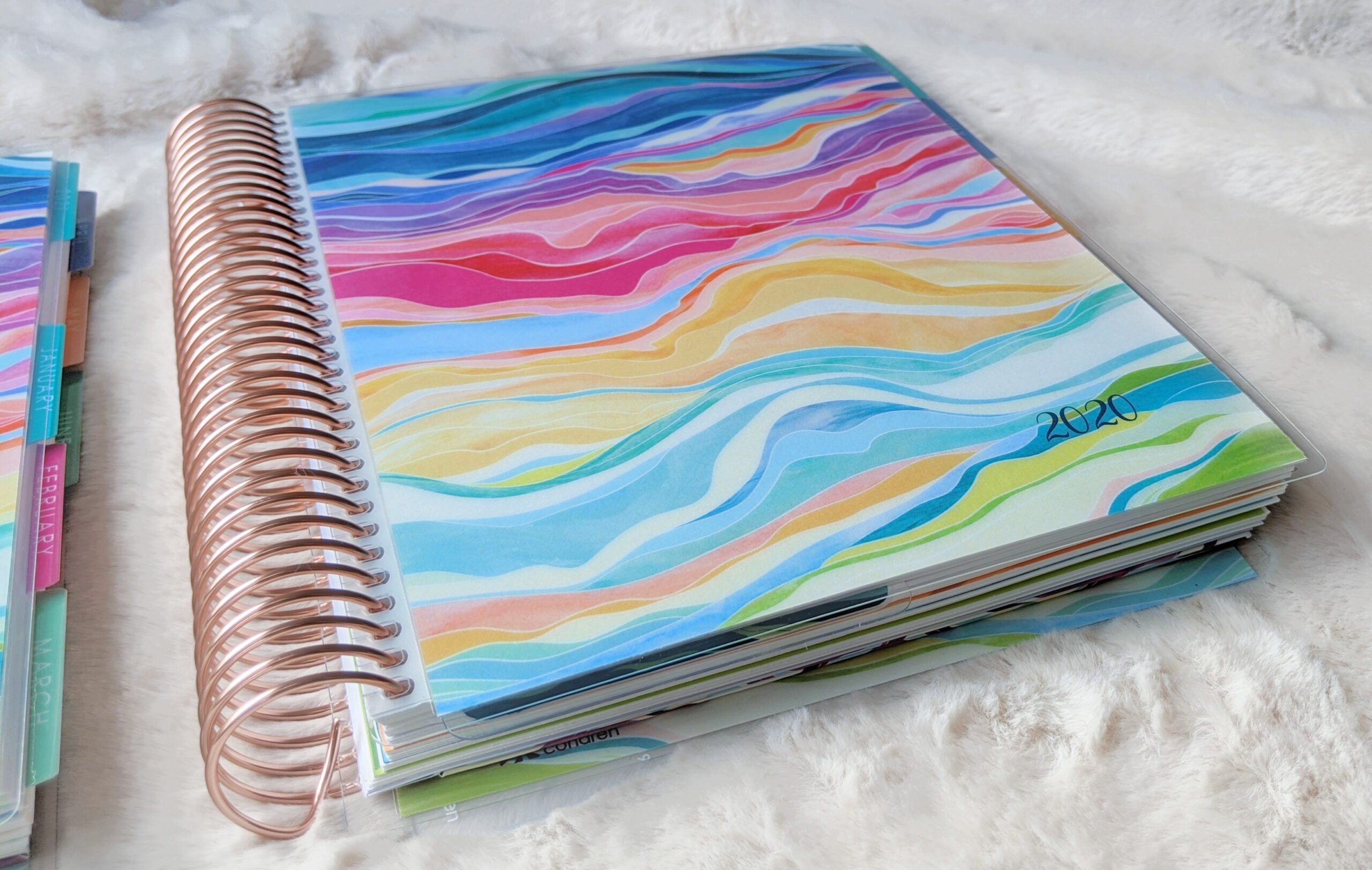 closer view of the Daily LifePlanner by Erin Condren