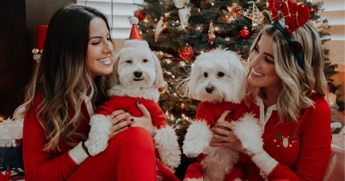 happy female best friends sitting in front of Christmas tree while holding dogs in Christmas outfits