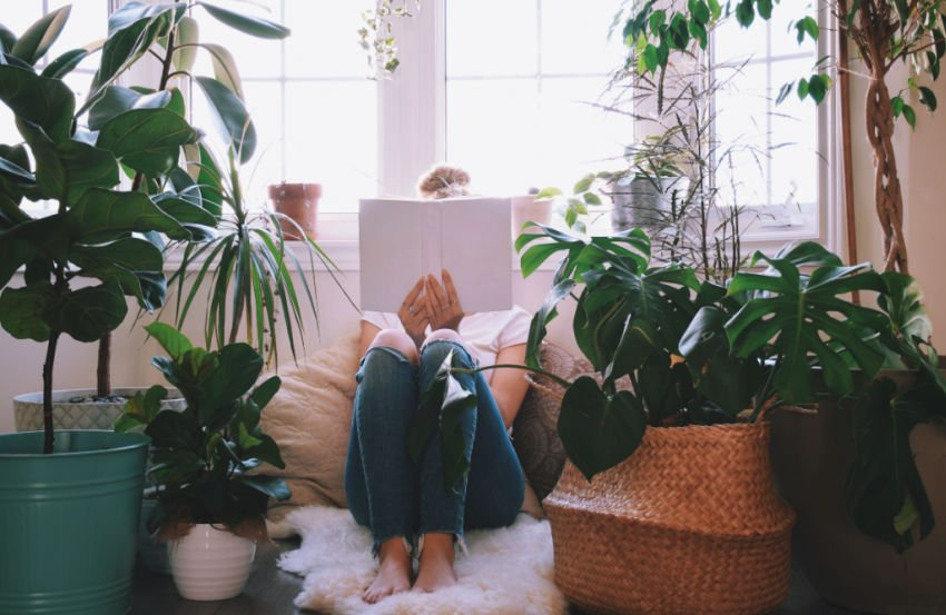 female college student reading a good book surrounded by plants in a bright room