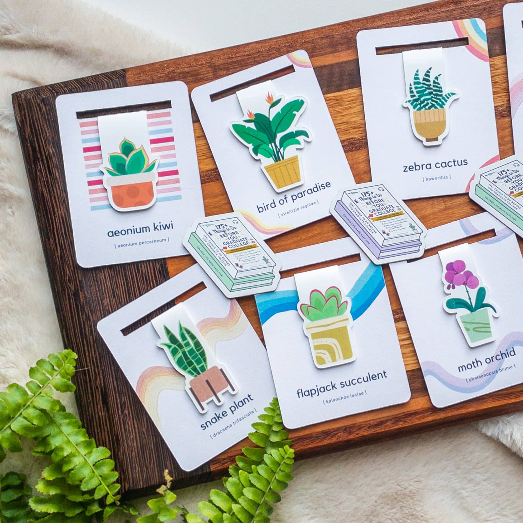 closer view of cute houseplant bookmarks + mini magnets