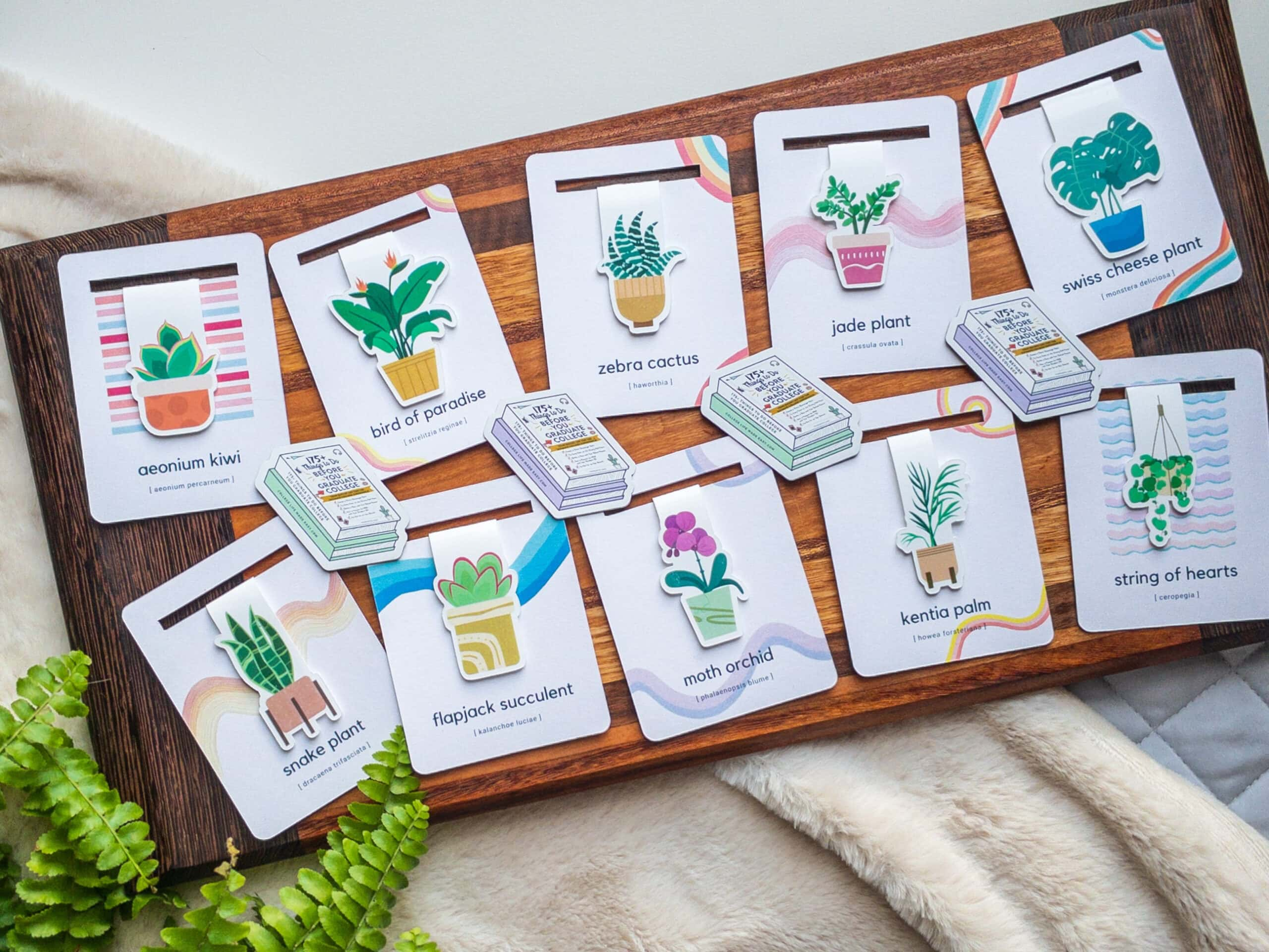 assortment of houseplant bookmarks + mini magnets arranged on charcuterie board with fern leaves in one corner