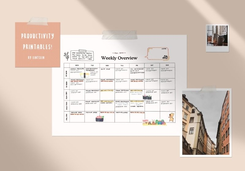 weekly overview planning template filled out with student schedule