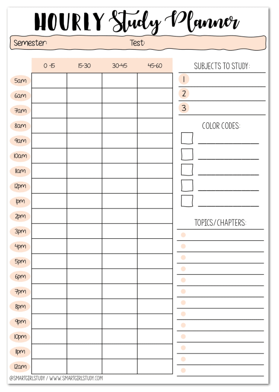 hourly study planner template with light pink elements